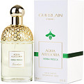 Aqua Allegoria Herba Fresca Eau De Toilette Spray 4.2 oz for women by Guerlain